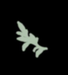 KH-leaf-fern.png