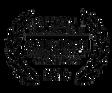 amdoc-laurels_orig_transparent black.png