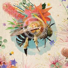 Benji - Blue Banded Bee