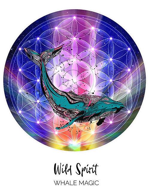 Wild Spirit - Whale Magic