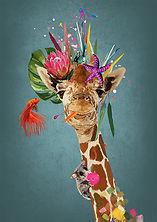 GiraffeWeb.jpg