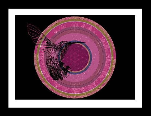 Hummingbird Mandala Print