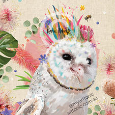 Grace - Barn Owl
