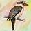 Thumbnail: Kookaburra