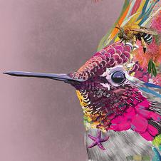 Colourful Hummingbird