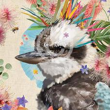 Miss Molly - Kookaburra