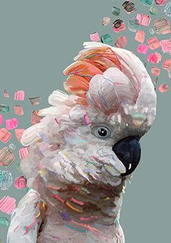 Ruffled Pink -Australian Cockatoo