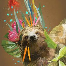 Sensitive Sloth