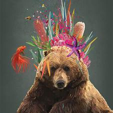 Regal Bear