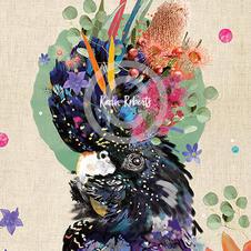 Frankie - Black Cockatoo