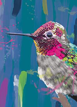Hummingbird Magic