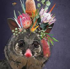 Pretty Possum