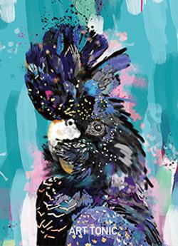 Glossy Black Cockatoo Portrait