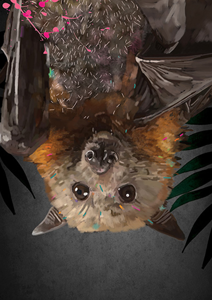 FLYING_FOX_WEB_ART_TONIC