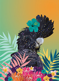 Stop it! - Fabulous Black Cockatoo