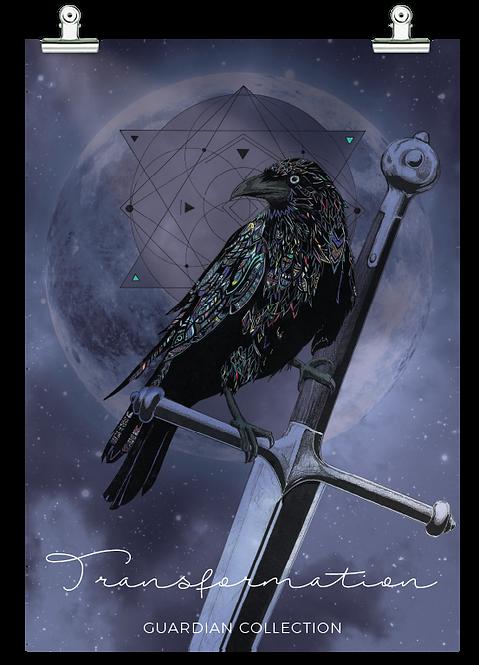 Transformation - Raven / Crow