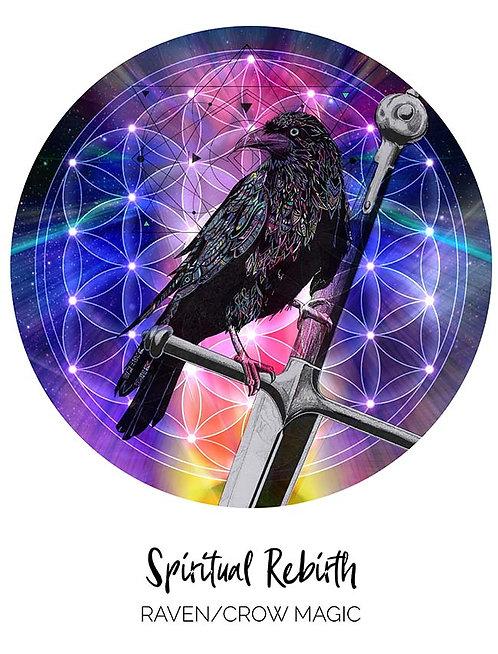 Spiritual Rebirth _ Raven/Crow Magic