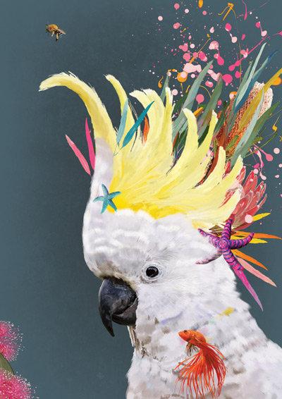Cheeky Sulphur Crested Cockatoo