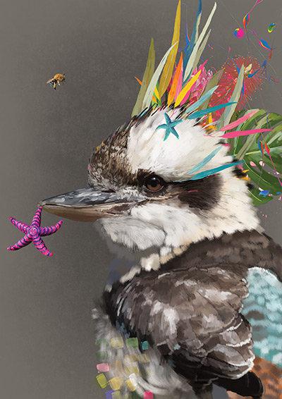 Bernice - Kookaburra