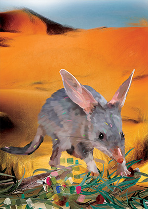 34_GREATER_BILBY