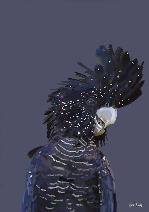 Black Cockatoo _Elvis