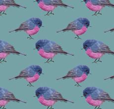 Australian Pink Robin Pattern
