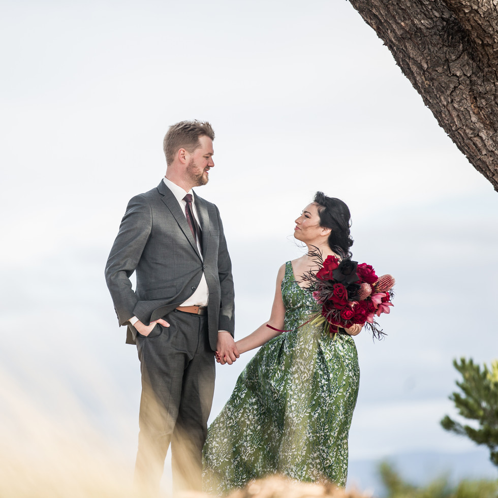 Best Photographers for Wedding event in Canberra
