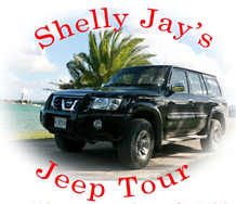 Shelly Jay Tours, Best Tours in Antigua