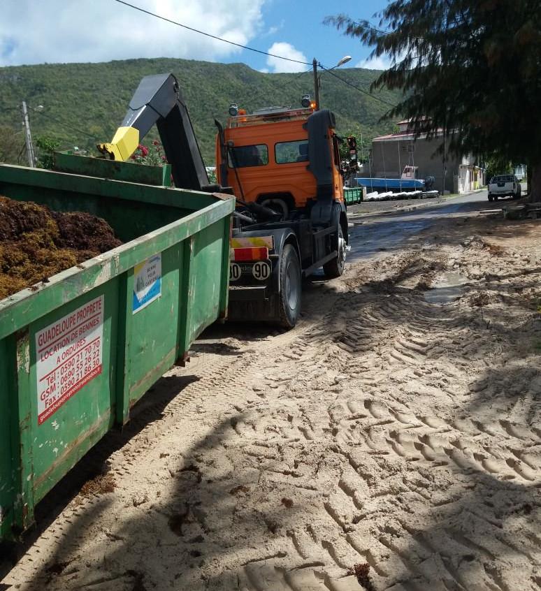 Sargasses - La Riviera du Levant Guadeloupe 2