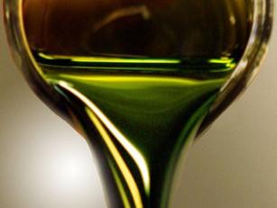 L'algocarburant : le carburant de demain ?