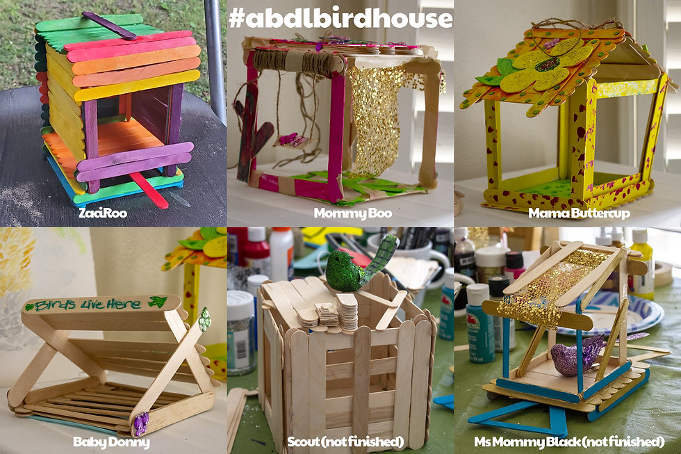 Birdhouse Results.jpg