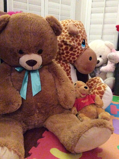 So many stuffies to cuddle you!