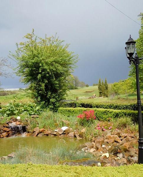 jardin-devant-maison.jpg