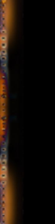 filmstrip_index_lf_05c.png