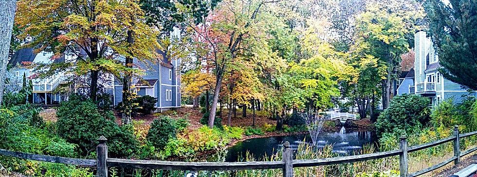 fall villas.jpg