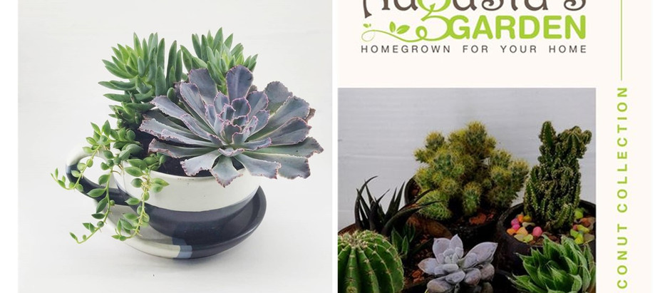Unexpected ways to use succulents for your wedding