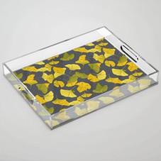 Acrylic Tray | $42