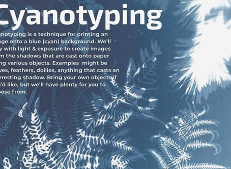 Cyanotype Group Class