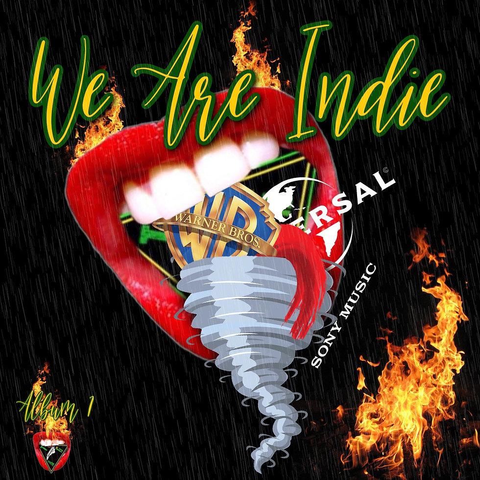 We Are Indie, ALbum 1