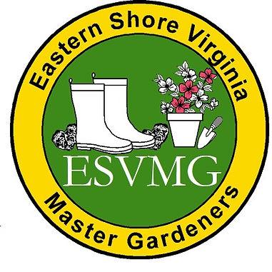 ESVMG new logo.jpg