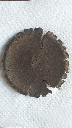 Biomaterial1.jpg