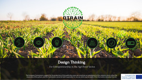 Design Thinking in the Agrifood sector