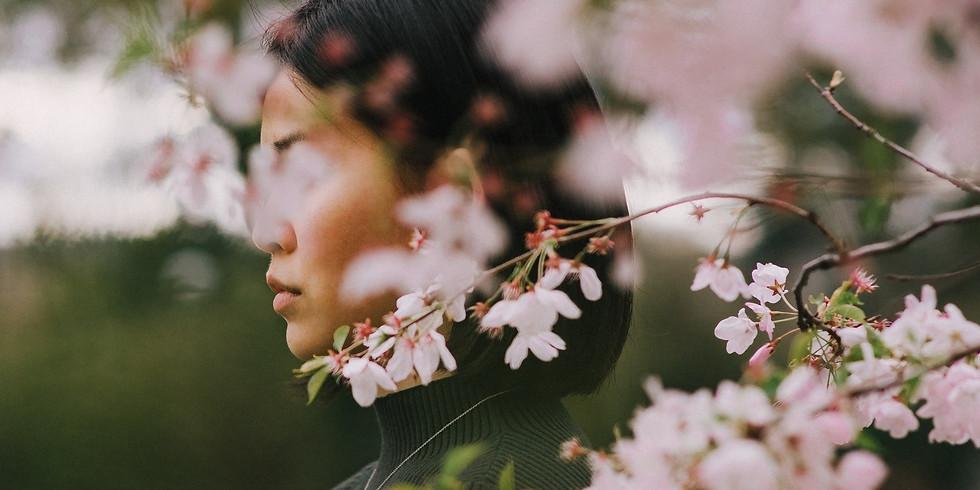 Feng-Shui no Feminino II