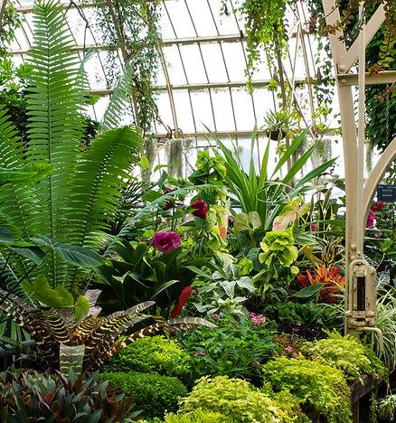 Botanic Gardens Ch-Ch