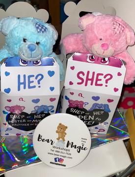 Gender Reveal Bears