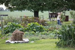 Prairie-fruits-farm-01_9971.jpg