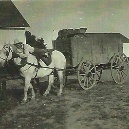 woodworth horse and hitch.jpg