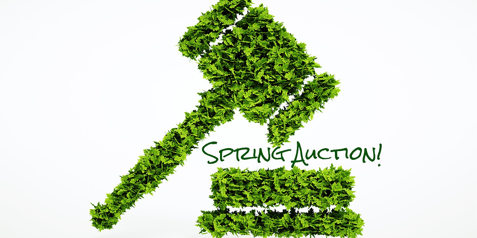 Spring Online Auction