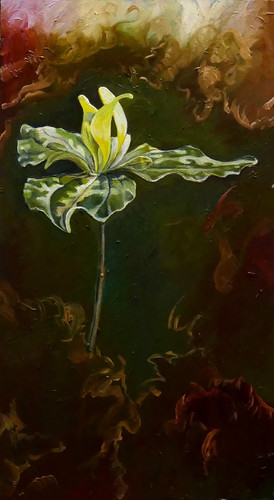 yellow trillium 2018 - sold