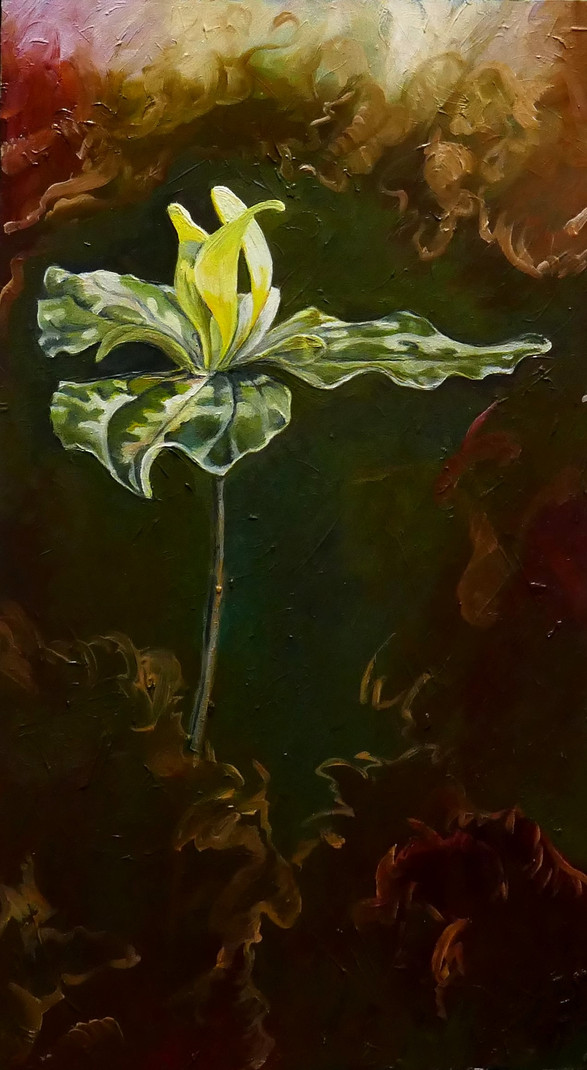 yellow trillium 2018 - sold